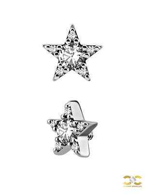Steel Swarovski® Zirconia 5mm Pave Star Stud